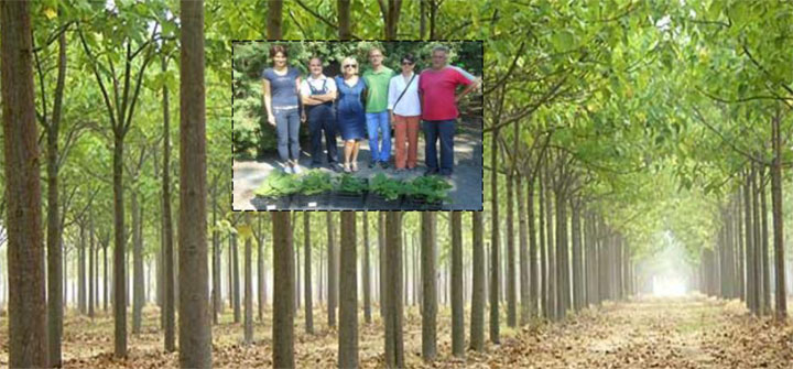 "Ekološki pokret Vrbasa poklonio sadnice vrtiću ""Bambi"" u Kuli"