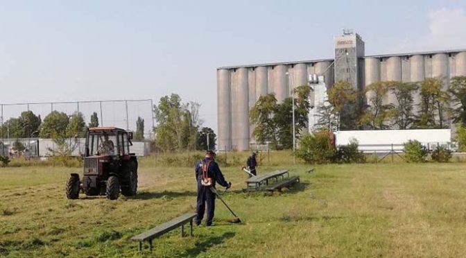 Združeno protiv ambrozije – Pokošeno 10 hektara površina pod ovom biljkom