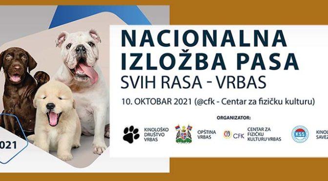 U nedelju u Vrbasu Nacionalna izložba pasa svih rasa