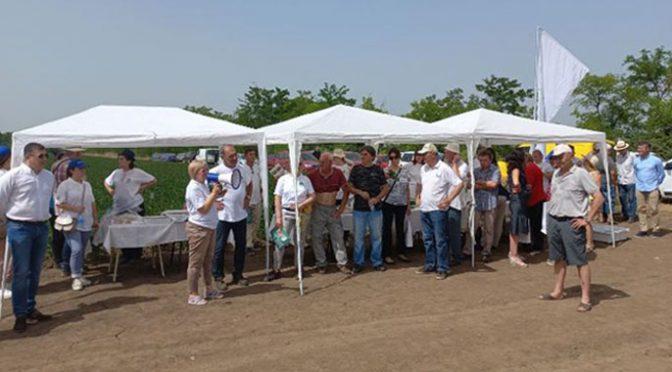 Održani Dani polja u organizaciji PSS Vrbas